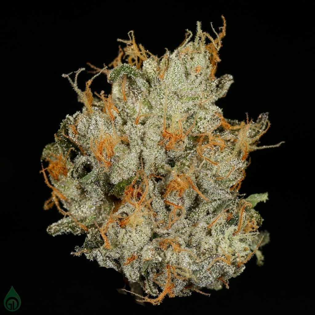 Photo of cured Green Dot Labs cannabis flower